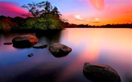 夕日、石、木、湖