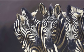 Preview wallpaper Three zebras, black background