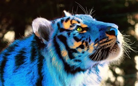 Preview wallpaper Tiger, colorful light