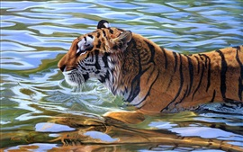 Preview wallpaper Tiger swimming in the water