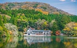 Preview wallpaper Travel to Japan, Kinrinko, lake, house, trees, autumn
