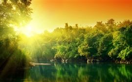 Árboles, río, amanecer, día soleado, mañana