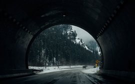 Túnel, camino, árboles, invierno, nieve
