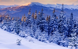Preview wallpaper Winter, snow, forest, mountains
