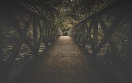Preview wallpaper Wood bridge, trees, leaves