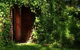Preview wallpaper Wood house, door, green vegetation