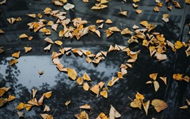 Yellow leaves, ground, love heart