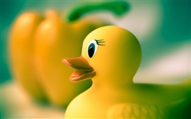 Preview wallpaper Yellow rubber duck, toys