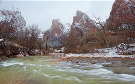 Zion National Park, mountains, river, snow, trees, winter, USA