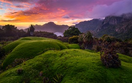 Preview wallpaper Australia, Tasmania, bushes, green grass, red sky, clouds, sunset