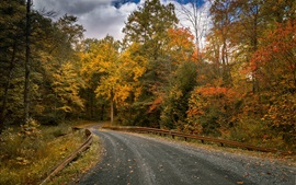 Preview wallpaper Autumn, forest, trees, road, clouds