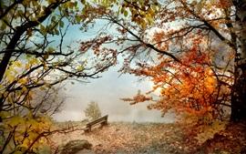 Осень, деревья, красные листья, скамейка, туман