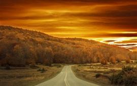 Outono, árvores, estrada, céu vermelho, pôr do sol
