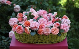 Preview wallpaper Basket, beautiful pink rose flowers