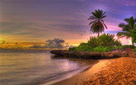Preview wallpaper Beach, sea, coast, palm trees, clouds, sunset