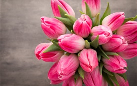 Beautiful pink tulips flowers, bouquet