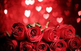 Lindas rosas vermelhas, fundo do coração amoroso