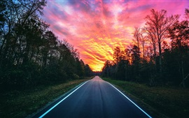 Beautiful sunset, red sky, road, trees