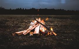 Костер, дрова, огонь, пламя, сумерки