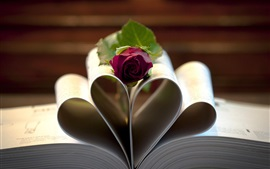 Book, paper, love heart, red rose