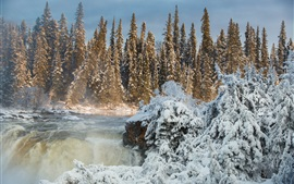 Preview wallpaper Canada, Manitoba, Pisew Falls, trees, snow, winter