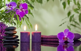 Preview wallpaper Candles, flame, orchid flowers, stones, SPA theme