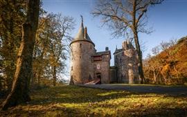 Castle, trees, autumn, Wales