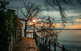 Croácia, Opatija, árvores, lanterna, baía, noite
