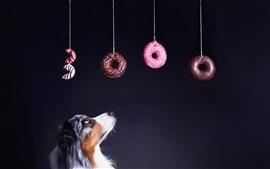 Olho de cachorro em bagels