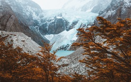 Preview wallpaper El Chalten, Argentina, mountains, lake, trees, autumn
