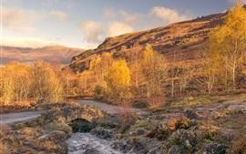 壁紙のプレビュー イングランド、カンブリア、木々、山々、クリーク、秋
