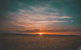壁紙のプレビュー フィールド、日没、草、空、雲