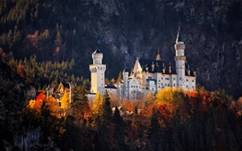 Preview wallpaper Germany, castle, forest, autumn, trees, sunshine