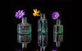 ガラスのボトル、花、反射、黒の背景