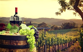 Preview wallpaper Green and red grapes, wine, barrel