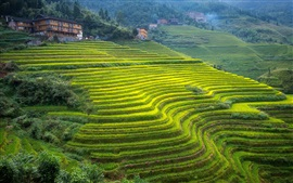 Preview wallpaper Guangxi, beautiful terraces, green, slope, house, China