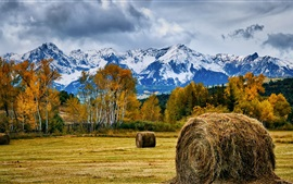 Preview wallpaper Hay, field, trees, mountains, autumn