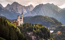Preview wallpaper Hohenschwangau Castle, Alps, trees, Germany