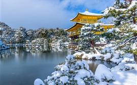 Kinkaku-JI, Япония, озеро, деревья, снег
