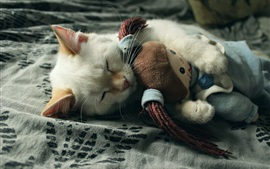 Preview wallpaper Kitten hug toy to sleeping