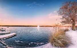 Озеро, деревья, снег, лодка, птицы
