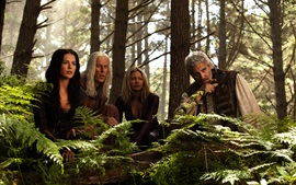 Preview wallpaper Legend of the Seeker, TV series