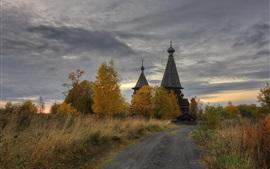 Ленинградская область, деревня, церковь, деревья, тропинка, облака, сумерки, Россия