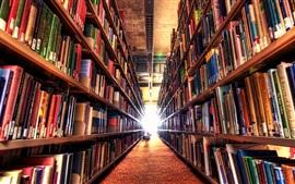 Biblioteca, muitos livros, caminho