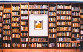 Library, many books, picture
