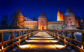 Preview wallpaper Lithuania, Trakai Castle, bridge, winter, snow, lights, night
