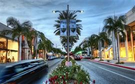 Los Angeles, Hollywood, loja, palmeiras, estilo HDR, EUA