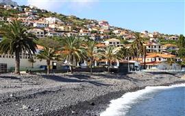 Madeira, Santa Cruz, Portugal, mar, palmeras, pendiente, casas, villa