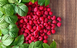 Preview wallpaper Many red raspberries, green leaves