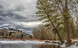 Montana, Missoula, USA, trees, winter, river, snow, clouds